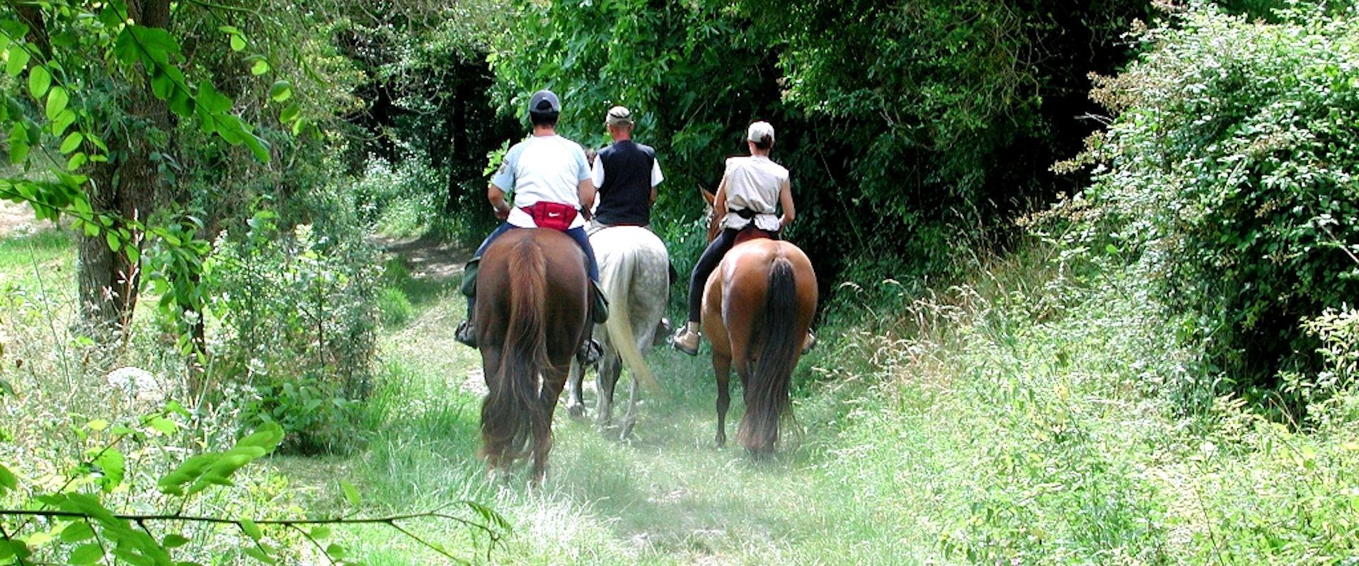 Promenade à cheval en Agenais