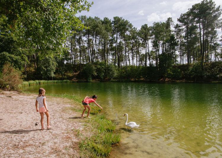 Lacs de Clarens à Casteljaloux